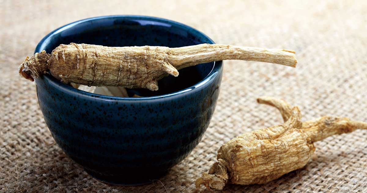 Herbs for COPD: Herbal Remedies That May Improve Your Breathing